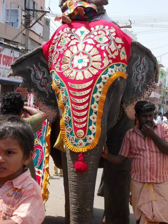 temple elephant in Dindigul, Tamil Nadu